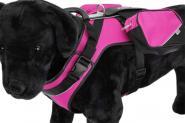 Sportgeschirr pink Crazy Paws -L-