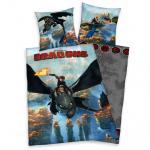 Wendebettwäsche Dragons Drachen zähmen leicht gem. 2